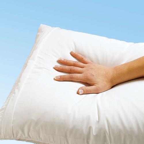 Milben Allergie Verbessern Sie Ihre Schlafqualität Bencard Ag